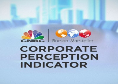 The Corporate Perception Indicator