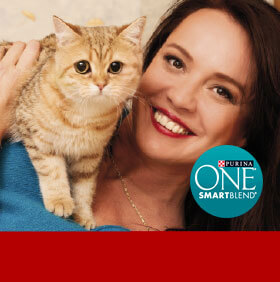 PURINA ONE, WORD OF MOUTH MARKETING